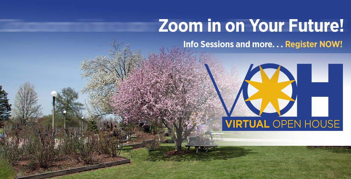 virtual info session and open