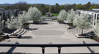 view of campus with blooming trees
